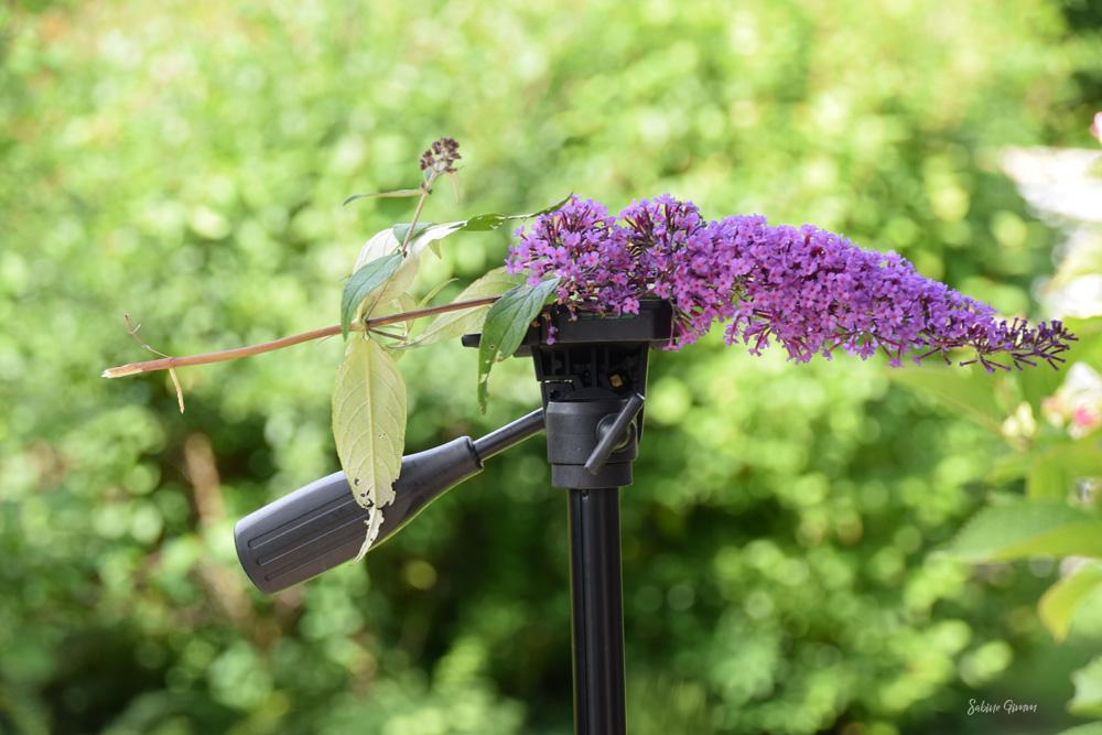Mein Garten ist ein Insektenhotel
