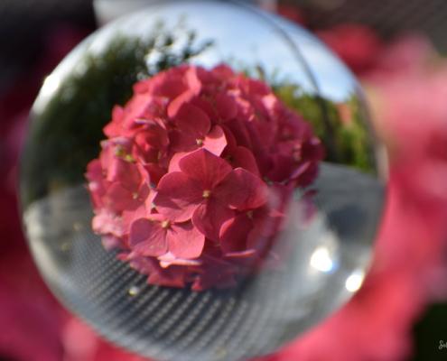 Fotografie Glaskugel