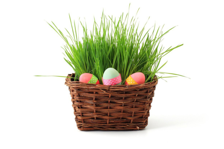 Frohe Ostern 2021   Lifestyle by Bine